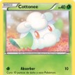 BW - Emerging Powers - 09 - Cottonee