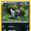 XY4 - Phantom Forces - 053 - Poochyena