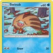 Invasion Carmesi - 019 - Swinub